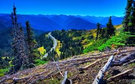 Картинка дорога, лес, небо, деревья, горы, долина