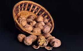 Обои ядро, орехи, корзинка, скорлупа