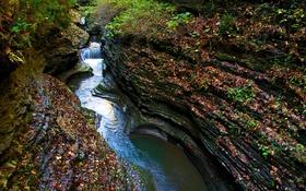 Обои поток, река, скалы, ущелье, водопад