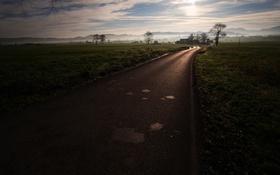 Обои дорога, пейзаж, утро