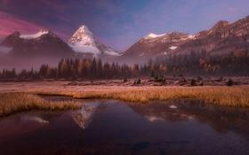 Обои лес, горы, озеро