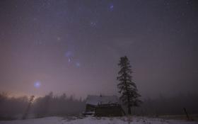 Картинка небо, звезды, туман, дом, дерево