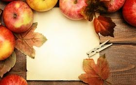 Обои яблоки, фрукты, листики, fruits, apples