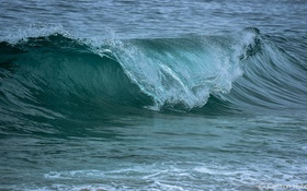 Обои волна, вода, брызги