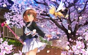 Картинка Цветы, Девушка, Улыбка, Card Captor Sakura, Румянец, Kinomoto Sakura, Mutsuki (Moonknives)