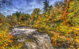 Обои осень, лес, ручей, течение, водопад, HDR, Шотландия
