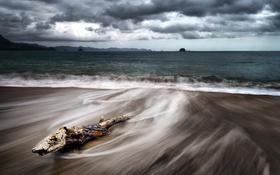 Картинка море, берег, бревно
