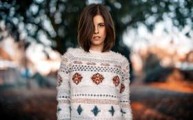 Картинка свитер, Selina, Martin Kuhn