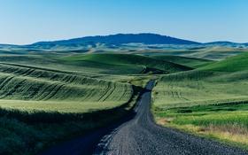 Обои дорога, поле, небо, горы, зеленый, автобус, ферма