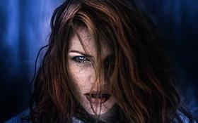 Картинка взгляд, волосы, веснушки, Georg Haaser, Even closer