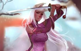 Обои взгляд, девушка, волосы, меч, арт, белые волосы, amelia