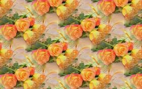 Картинка цветы, фон, роза, букет, текстура