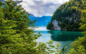 Обои зелень, деревья, горы, ветки, озеро, скалы, Германия