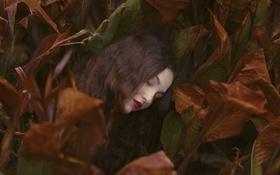 Картинка лицо, листва, волосы, помада