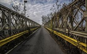 Картинка дорога, осень, мост