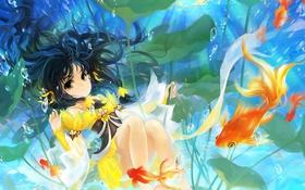 Картинка листья, девушка, рыбы, водоросли, глубина, арт, huazha01