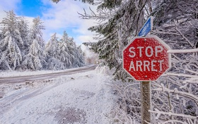 Обои дорога, снег, деревья, природа, road, trees, winter