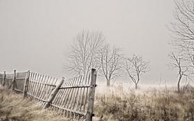 Обои забор, природа, поле