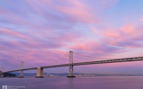 Обои мост, огни, отражение, ворота, залив, золотые, photographer