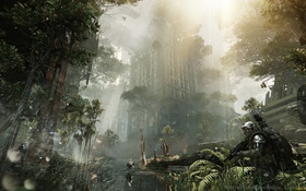 Картинка джунгли, солдаты, развалины, нью-йорк, cell, crysis 3