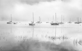 Обои lake, fog, dawn, mist, sailboats