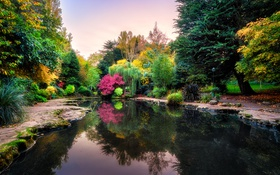 Обои осень, небо, деревья, скамейка, парк, отражение, Англия