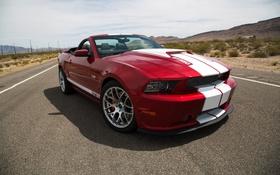 Обои дорога, пустыня, Ford, Shelby, суперкар, форд, шелби