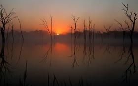 Обои небо, солнце, деревья, закат, озеро