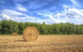 Обои облака, солнечный, небо, тень, урожай, фермы, сено
