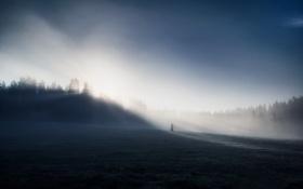 Обои фигура, поле, утро, туман