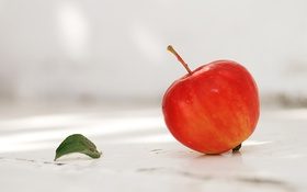 Обои autumn, fruit, garden, Season of apples