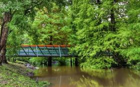 Обои парк, мост, Австралия, зелень, деревья, пруд
