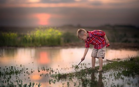 Обои шорты, болото, мальчик, рубашка