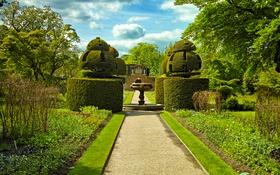 Обои фонтан, зелень, Сад