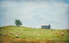 Картинка облака, трава, небо, поле, забор, ферма, дерево