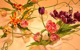Картинка цветы, фон, композиция