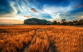 Обои поле, осень, небо, трава, вода, облака, скалы