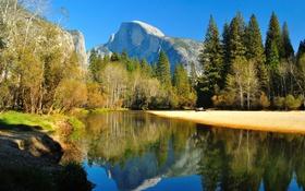 Обои осень, лес, деревья, горы, река, Калифорния, США