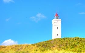 Обои маяк, птицы, небо, лето, полет