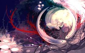 Картинка девушка, птицы, медузы, вихрь