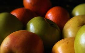 Обои красное, яблоки, еда, зеленое