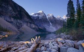 Обои лес, небо, деревья, горы, озеро, Канада, Alberta