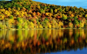 Обои осень, вода, деревья, отражение, красота, время года, пейзаж. природа