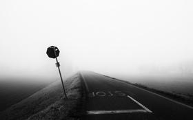 Обои дорога, туман, знак