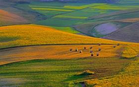Обои холмы, поля, Перуджа, Италия, природа