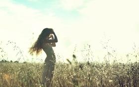 Картинка поле, лето, небо, девушка, солнце