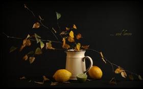 Картинка осень, листья, ветки, лимоны