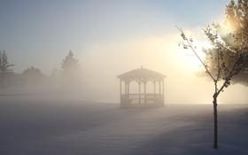 Обои зима, снег, деревья, парк, мороз, беседка