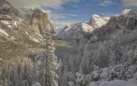 Обои снег, горы, Сьерра-Невада, California, долина, зима, Sierra Nevada