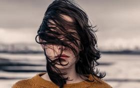 Картинка девушка, ветер, волосы, губы, свитер